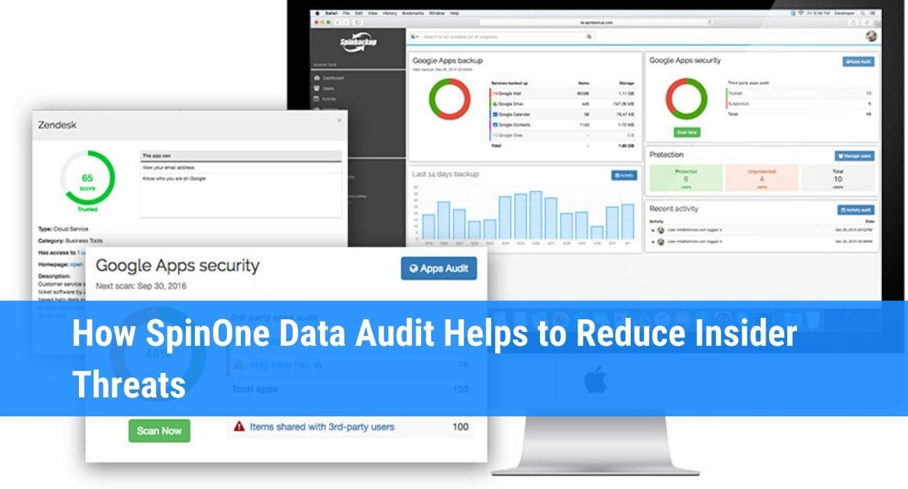 data audit SpinOne