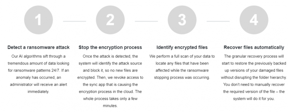 Overview of the SpinSecurity automated ransomware protection